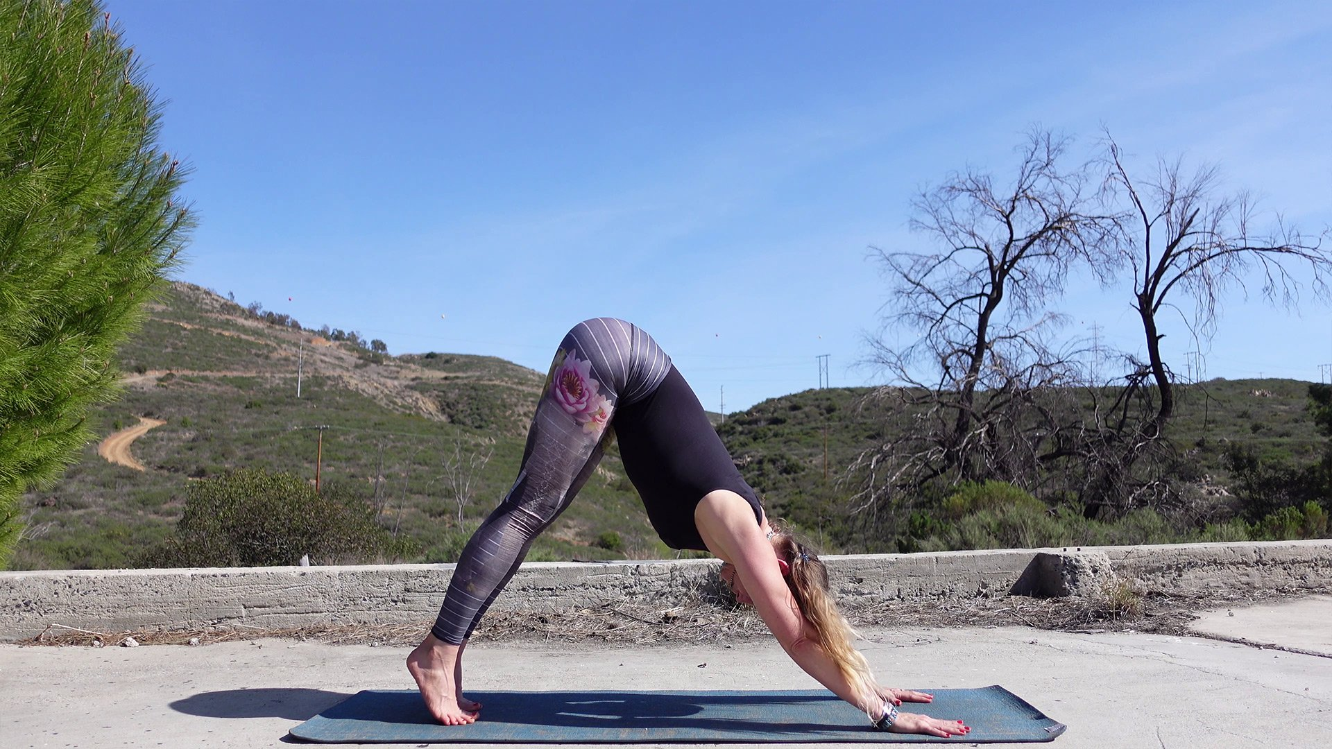 Yoga Videos Online - My Yoga Online - YouTube